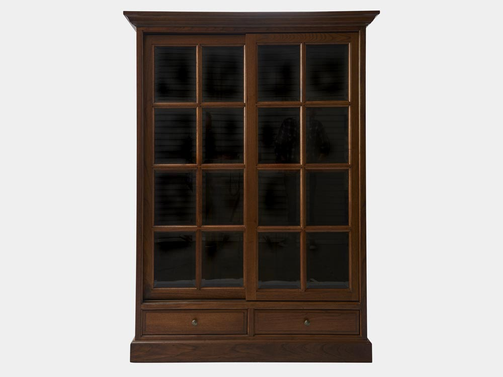 Bookcase with bevelled glass sliding door french accent for French style front door